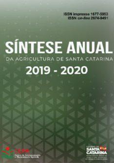 Capa_sintese_2020