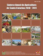 Capa_sintese_anual_2011