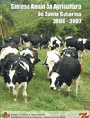 capa_sintese2007