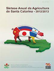 capa_sintese_2013